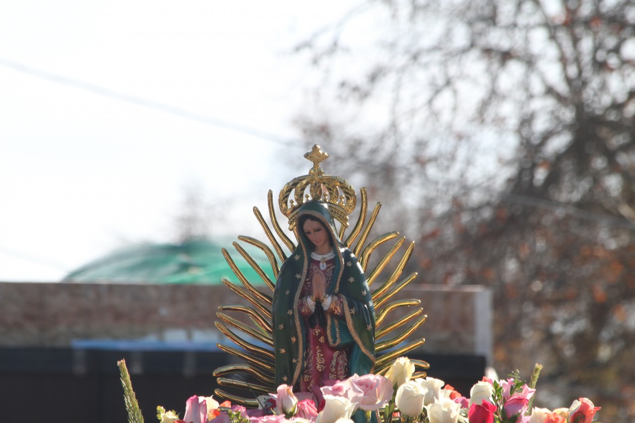 Our Lady of Guadalupe Celebration 2014